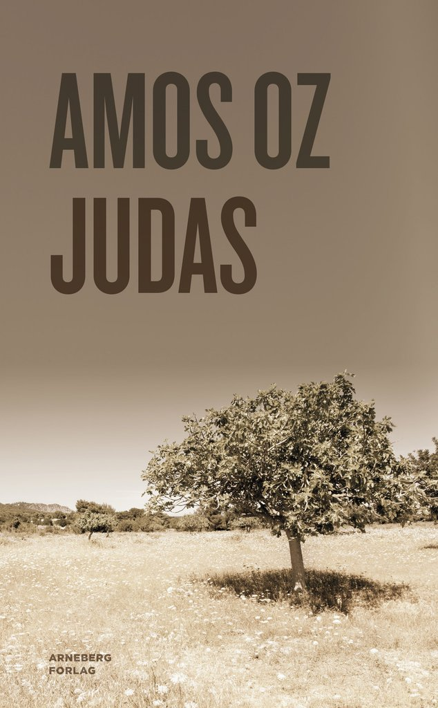 Sterk og tankevekkende roman om politikk, religion, kjærlighet og svik