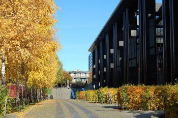 Universitetet i Oslo er en stor produsent av vitenskapelige dokumenter i Norge.