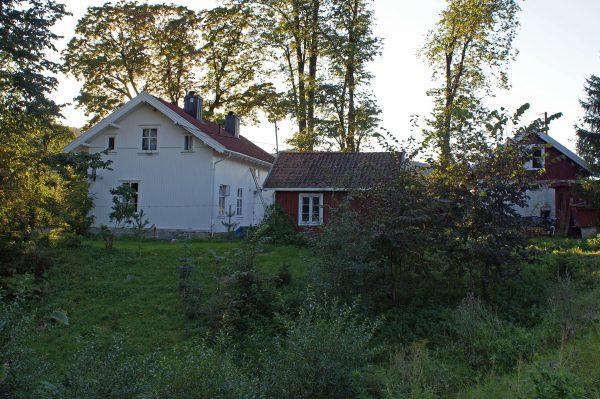 Økri skole 2011
